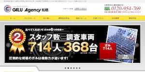 総合探偵社ガルエージェンシー船橋の公式サイト(https://www.galu.co.jp/)より引用-みんなの名探偵