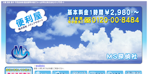 MS探偵社の公式サイト(http://www.media-support-114.com/ms-t.html)より引用-みんなの名探偵